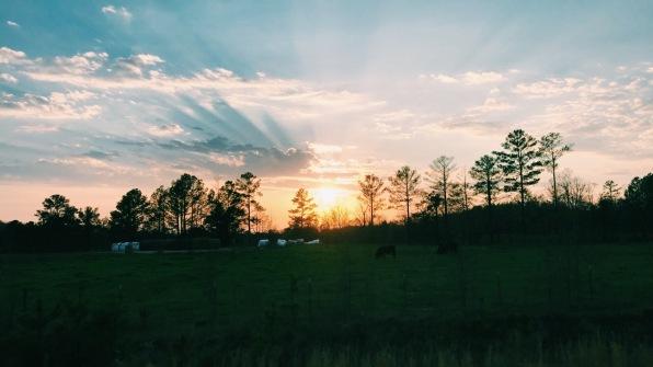 Sweet home Alabama. PHOTO/ DURDEN SMITH