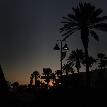 I really love sunsets, a lot. And I just thought this photo was cool. I took this while I was in Florida two years ago.