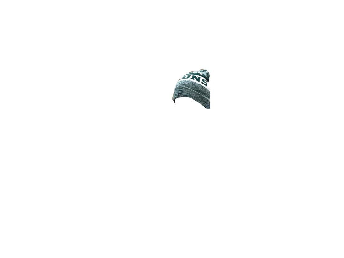 Beanie Cutout.jpg